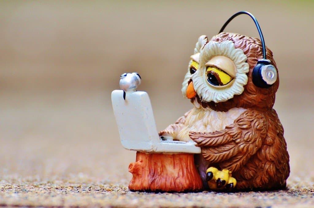 Owl typing away on laptop